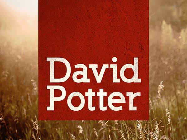 David Potter Music