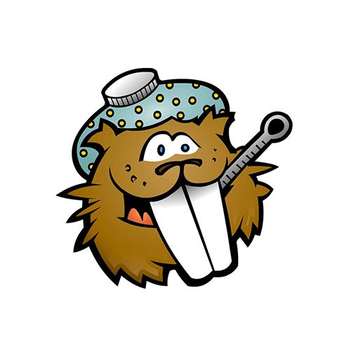 Feaver